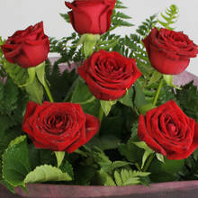 Simply Divine 6 Red Roses