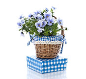 gift-basket-with-present